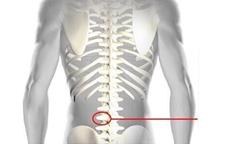 vertebra neymar