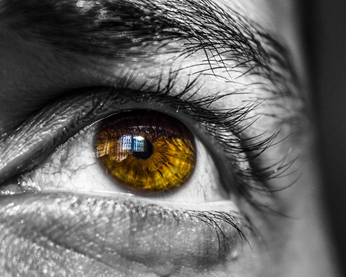 Retinosis pigmentaria perdida de vision
