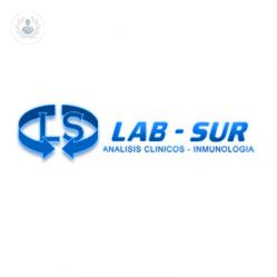 Laboratorios LAB-SUR