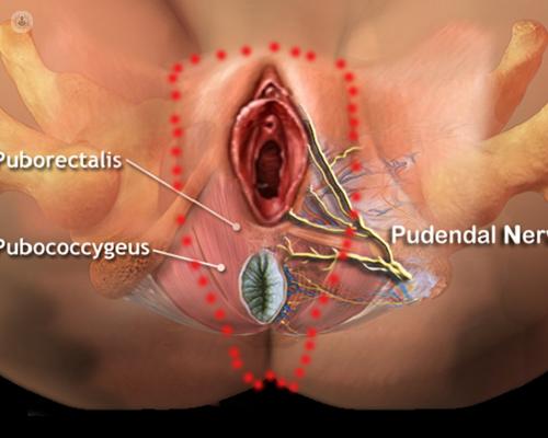 зуд половых органов аллергия