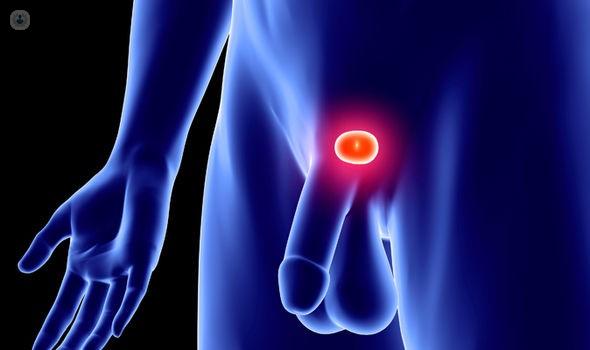 tipi di prostatite nyc 2017