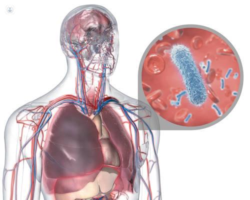 tratamiento de shock séptico emedicina diabetes