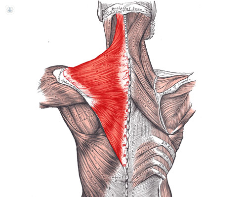 dolor cervical tratamiento fisioterapia